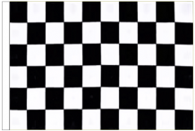 Black And White Check 3' x 2' Medium-Sized Sleeved Flag